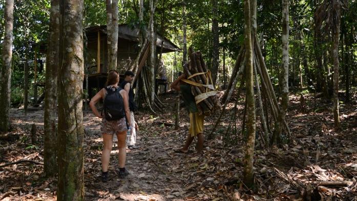 9 Jungles 16