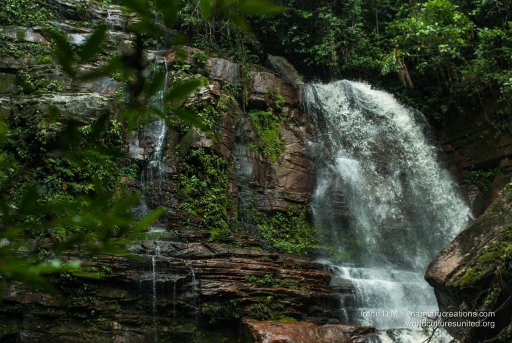 waterfalltrip-54